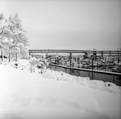 Winter Wonderland #8 (spiritusmentis) Tags: hasselblad swc 38mm f45 carlzeiss biogon fuji neopan acros 100 rodinal stand development portland oregon snow downtown waterfront