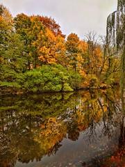 Superb Fall Colours (mikkelfrimerrasmussen) Tags: fall autumn københavn copenhagen kastellet citadel lake pond moat