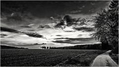 The Light is invaluable in these Days... (Ody on the mount) Tags: anlässe bäume em5ii fototour himmel landschaft licht mzuiko918 omd olympus pflanzen schwäbischealb wege wolken bw clouds monochrome sw tree ways sanktjohann badenwürttemberg deutschland de