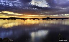 0S1A8461enthuseb (Steve Daggar) Tags: tascott sunrise seascape landscape woywoy nswcentralcoast reflection reflections