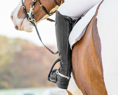 On Deck... (shannon_blueswf) Tags: horse show stadium equestrian equine spur saddle boot bridle depthoffield nikon nikond3300 nikonphotography fine art fall autumn beautiful outdoors farm