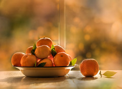 Bring me sunshine (Photography by Julia Martin) Tags: photographybyjuliamartin clementines orange bowloffruit backlit contrajour bokeh autumn autumnal goldenlight bringmesunshine tabletopphotography 4652getlow hcs clichesaturday