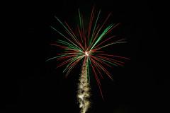Fireworks Palmtree (307/365, November 3rd)