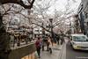 Sakura-Kiyamachi-Kioto-5 (luisete) Tags: hanami japan japón cerezosenflor kiyamachi kioto kyoto sakura