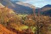 Glen Lyon Autumn Colours (eric robb niven) Tags: ericrobbniven scotland glenlyon bridgeofbalgie landscape