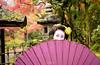 Mameryu - Maiko in Kyoto 05 (JUNEAU BISCUITS) Tags: maiko geisha kimono umbrella garden temple japan gion osaka portrait portraiture beauty