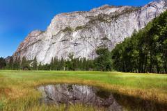 El Capitan with Reflection (Photomatt28) Tags: 2017california california effects elcapitan reflection travel trips yosemitenationalpark
