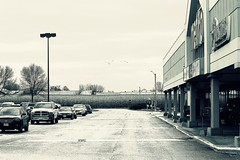 Getting Groceries (rephoto14) Tags: