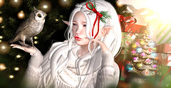 Waiting for Holidays (meriluu17) Tags: hextrordinary astralia boudoir elf elven ears fantay fantasy owl animal forest tree christmas holidays friend baby sweet white pale portrait magic