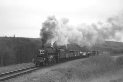 Black 5 goods (feroequineologist) Tags: 44806 black5 lms nymr northyorkshiremoorsrailway railway train steam goathland