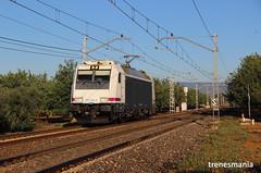 Aislada (Trenesmania) Tags: tren trenes train trains railway ferrocarril renfe adif rodalies catalunya mercancías locomotora via trainspotter 253 253004 traxx transfesa bombardier vilaseca tarragona canon