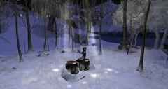 Silvershot Christmas Tree Farm (Esme Capelo) Tags: winter second life esme capelo snow