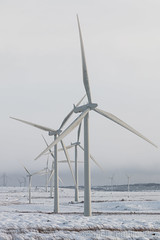 Winter at Whitelee (GWMcLaughlin) Tags: 70d whitelee turbines canon renewable poer renfrewshire 18135mm moor windfarm snow scottish scotland canon70d generation iberdrola electricity energy efs