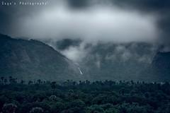 Rainy Day @ Courtallam (Suga's Photography) Tags: naturephotography naturelover landscape rain monsoon courtallam westernghat tenkasi tamilnadu india falls cloud