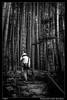 Paseando entre bambus (Montse Estaca) Tags: japan japón giappone kamakura bambu bamboo hombre man uomo paseante caminante excursionista hiker walker camminatore bosque bosco forest troncos escaleras stairs scale logs bw bn bianco blanco black white negro nero templohokokuji templo temple hokokujitemple 報国寺 jardín giardino garden zen naturaleza natura nature landscape landscapephotography fotografíadepaisaje paisaje paesaggio