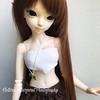 Harmony (xvictoriamargaretx) Tags: abjd bjd ball jointed doll balljointeddoll dolls fairyland fairylandminifee msd mnf minifee aline minifeealinerenewal minifeeelfflam elf flam harmony