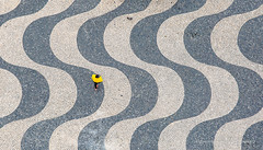 The yellow one and pigeon (ignacy50.pl) Tags: minimal minimalism abstract pattern pavement people birdseyeview bird bricks mosaic lisbon portugal citylife cityview travel reportage