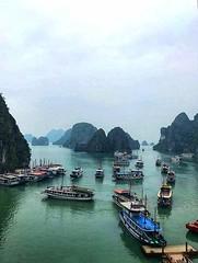 All roads lead to ..... 🌎 (carlesbaeza) Tags: vietnam bahia river rio boat barca ngc travel viajar asia hanoi