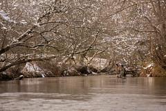 North Georgia Snow & Fly Fishing (DitchGyrl) Tags: 2017 cartecay ellijay fishing flyfish jeremiah martin river snow december j winter
