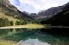 Nebelhorn Seealpe (didibild) Tags: wasser bäume seealpe landschaft berg nebelhorngebiet oberstdorf allgäu bayern deutschland