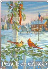 Peace on Earth 2017 (booboo_babies) Tags: christmas birds winter landscape snow holiday
