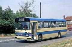 Golden Miller (Wilder), Feltham: ELA389T in Town Lane, Stanwell (Mega Anorak) Tags: bus bedford ymt duple goldenmiller wilder stanwell