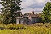 Everywhere You Look -2 (nikons4me) Tags: oldhouse building wisconsin wi overgrown pines abandoned abandonment decay decaying nikonafsdx18200mmf3556gifedvr nikond200 clouds northwoods home oncewashome
