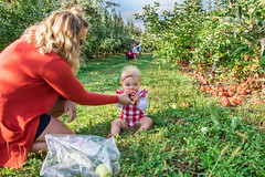 Apple Picking at Geig's Orchard (meganleebuchanan) Tags: orchard apples apple picking medina ohio tourism adventure people lifestyle travel destination fall foliage family children kids