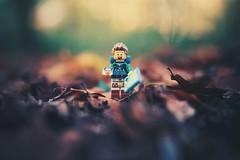 wanderlust (christian mu) Tags: wanderlust lego legominifiguren legominifigures bokeh depthoffield forest woods distagon3514 35mm 3514 sonya7ii sony christianmu nature autumn bricks zeiss funny joke dof germany münster muenster