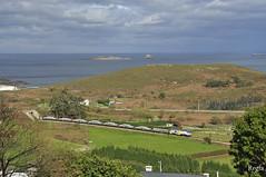 Madeiro (REGFA251013) Tags: feve renfe madeiro tren train comboio via estrecha galicia españa