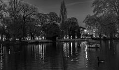 "A la tombée de la nuit. Vincennes, nov 2017 • <a style=""font-size:0.8em;"" href=""http://www.flickr.com/photos/125988370@N06/38496865652/"" target=""_blank"">View on Flickr</a>"