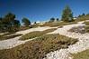 Mont Ventoux. (Cri.84) Tags: ventoux vaucluse montagne provence