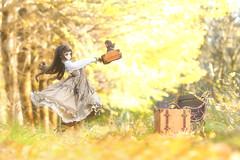 Fine autumn day (のの♪) Tags: dd dollfiedream