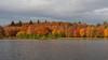 Virginia Water Lake in Autumn-EB160339-Edit (tony.rummery) Tags: autumn autumncolours em10 lake mft microfourthirds omd olympus surrey trees virginiawater runnymededistrict england unitedkingdom gb