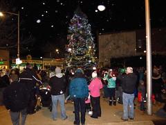 IMG_0559 Christmas Tree Lighting (jgagnon63@yahoo.com) Tags: christmas christmaslights christmasdecorations christmastree escanaba uppermichigan downtownescanaba downtown nightphotography night november