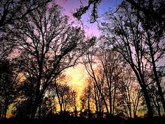 sunset (#KPbIM) Tags: 2017 fall october michigan sunset light color royaloak park evening starr jaycee