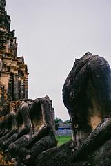 Relics of Dynasty 1.0 | Voigtlander135 (IG @ Meandergraph) Tags: thailand krabi bangkok chiangmai phuket kohsamui travel asia southeastasia streetphotography film analog 35mm filmphotography nikon nikonfe2 nikkor50mm 50mm