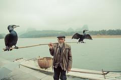 _62A3201 (gaujourfrancoise) Tags: china chine guangxi guilin yangshuo gaujour cormorantfishermen pêcheursauxcormorans traditionalfishing pêchetraditionnelle night nuit light lamparo cormorants cormorans