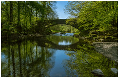 Bridge over Brathay river (John Joslin) Tags: sunny bright a7r spring river bridge lake district trees water reflections sony brathay stones rocks green leaves branches cumbria colour daylight england sky uk landscape light nature north outdoors outside summer symmetry