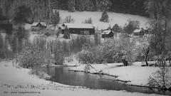 20171129001070 (koppomcolors) Tags: koppomcolors vinter winter snö snow värmland varmland sweden sverige scandinavia