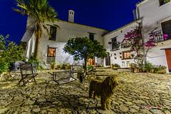 Castillo de Castellar, Cadiz (Antonio Camelo) Tags: nikon castillo castle castellar cadiz andalucia patio