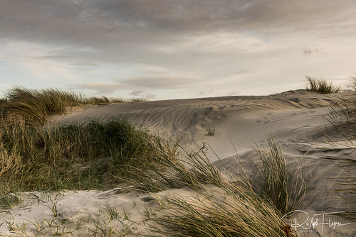 West Wittering-4