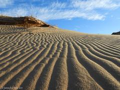 Sand Waves (JamesEyeViewPhotography) Tags: sand dunes beach grass lake michigan greatlakes sky clouds autumn northernmichigan landscape nature sleepingbeardunes nationallakeshore waves jameseyeviewphotography
