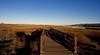 Wetlands Trail (kevinfoxphotography53) Tags: arrowhead marsh trail martin luther king jr regional shoreline ebparksok ebparks kevinfoxphotography san leandro bay creek full moon setting california fine art photography