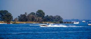 Birds & Boats Paradise . .