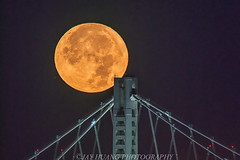 Nice Touch (Jaykhuang) Tags: supermoon2017 fullmoon moonset oakland baybridge eastspan eastbay dec32017 jayhuangphotography planit mobileapp