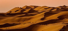 Waves of the desert (Piotr_ewaipiotr_pl) Tags: ifttt 500px sand landscapes blue sky desert peak dunes tranquil scene cloudless distance daybreak oman longshot seclusion dramatic landscape wahiba sharqyia