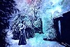 Lucid Dream (KingfisherDreams) Tags: trees ethereal dream winter snow
