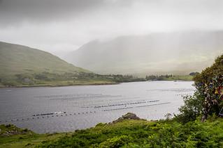 Ireland - Pollacapall Lough