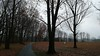corecreek11 (daily observer) Tags: corecreekpark buckscounty pennsylvania trees baretrees moody murky